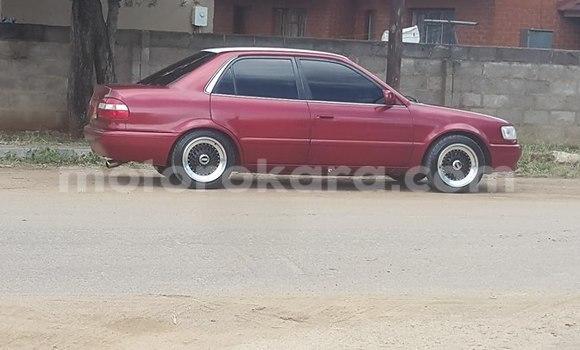 Buy Honda Civic Red Car in Broadhurst in Gaborone