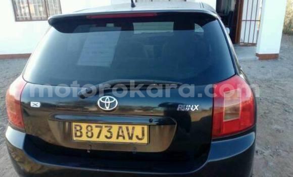 Buy Toyota Runx Black Car in Broadhurst in Gaborone